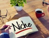 Blog de nisa sau blog generalist?